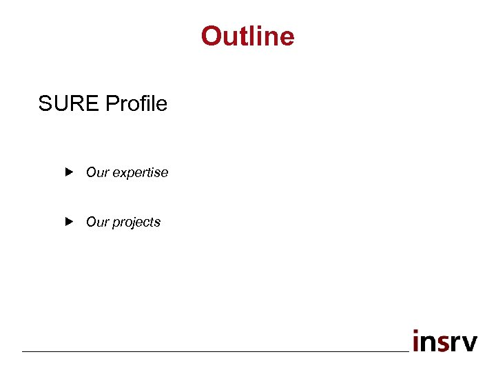 Outline SURE Profile Our expertise Our projects