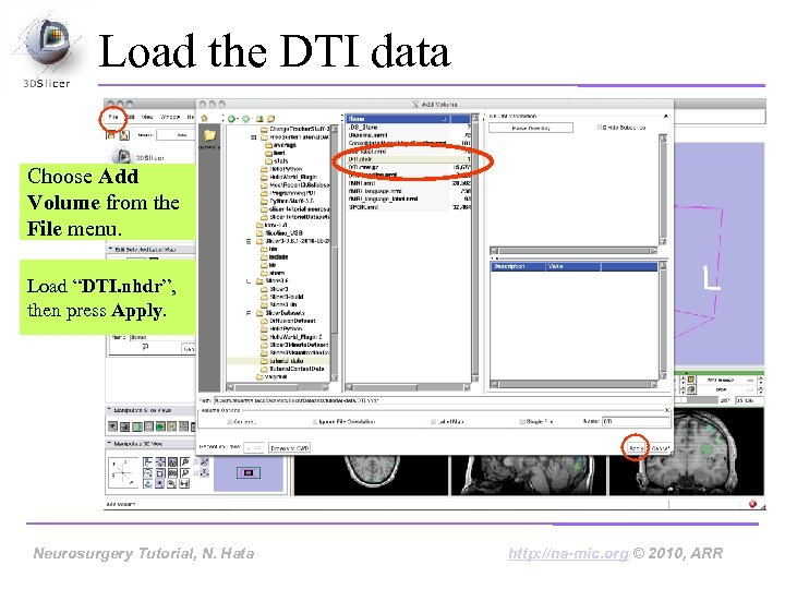 """Load the DTI data Choose Add Volume from the File menu. Load """"DTI. nhdr"""","""