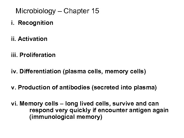 Microbiology – Chapter 15 i. Recognition ii. Activation iii. Proliferation iv. Differentiation (plasma cells,
