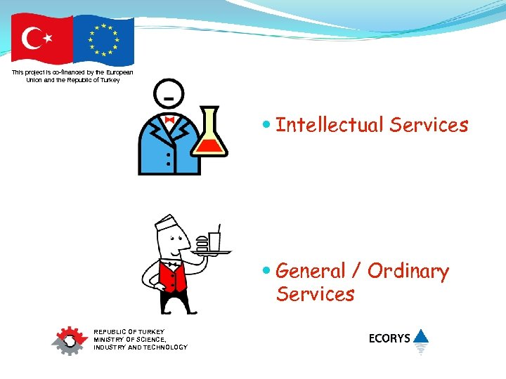 This project is co-financed by the European Union and the Republic of Turkey Intellectual