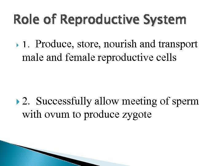 Role of Reproductive System Produce, store, nourish and transport male and female reproductive cells