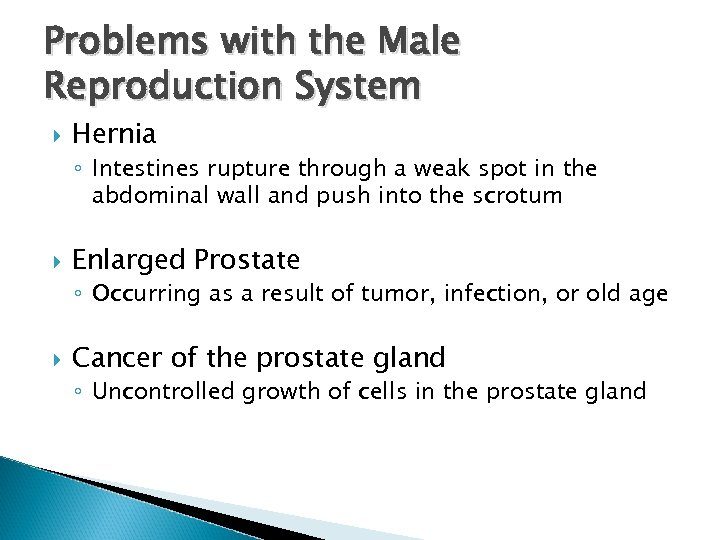 Problems with the Male Reproduction System Hernia ◦ Intestines rupture through a weak spot