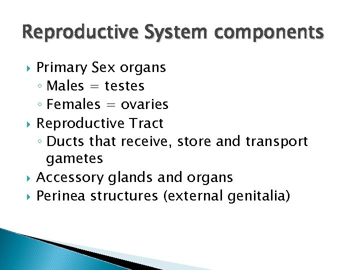 Reproductive System components Primary Sex organs ◦ Males = testes ◦ Females = ovaries