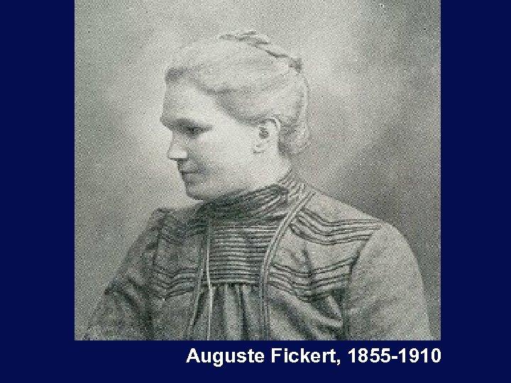 Auguste Fickert, 1855 -1910