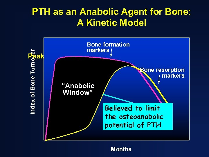 Index of Bone Turnover PTH as an Anabolic Agent for Bone: A Kinetic Model