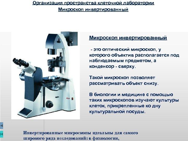 Организация пространства клеточной лаборатории Микроскоп инвертированный - это оптический микроскоп, у которого объектив располагается