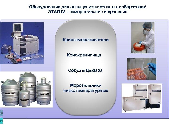 Оборудование для оснащения клеточных лабораторий ЭТАП IV – замораживание и хранение Криозамораживатели Криохранилища Сосуды
