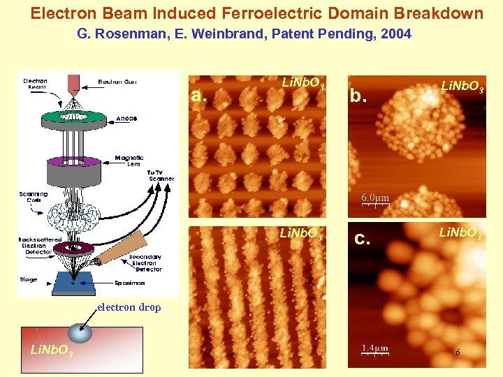 Electron Beam Induced Ferroelectric Domain Breakdown G. Rosenman, E. Weinbrand, Patent Pending, 2004 a.