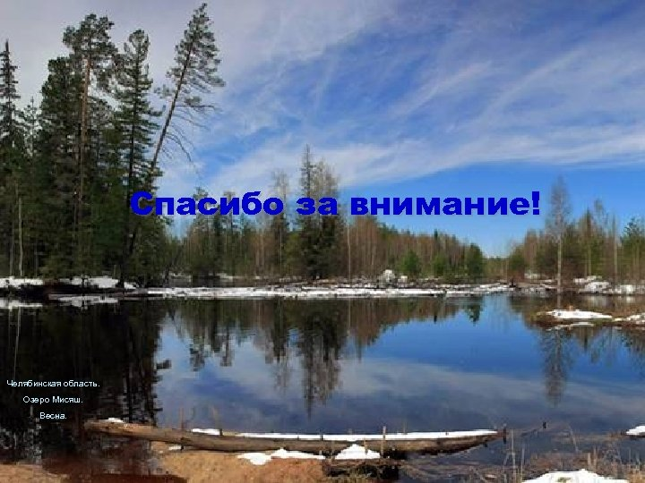 Спасибо за внимание! Челябинская область. Озеро Мисяш. Весна.