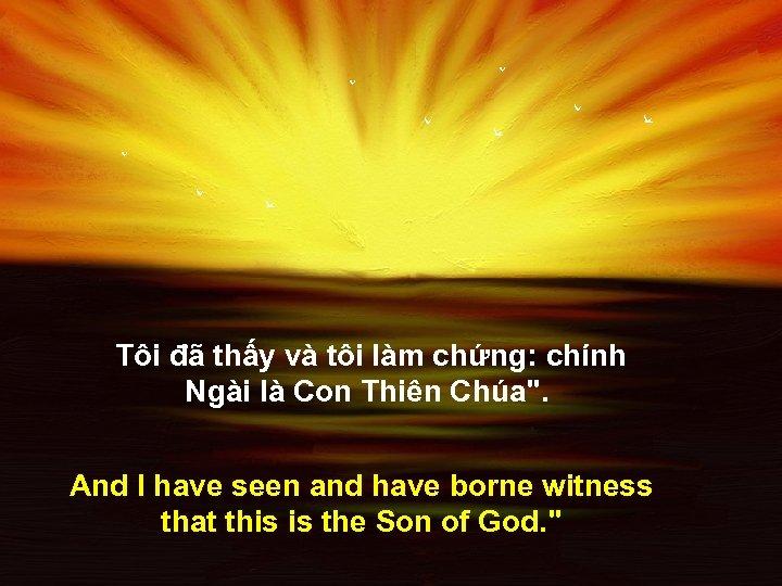 Tôi đã thấy và tôi làm chứng: chính Ngài là Con Thiên Chúa