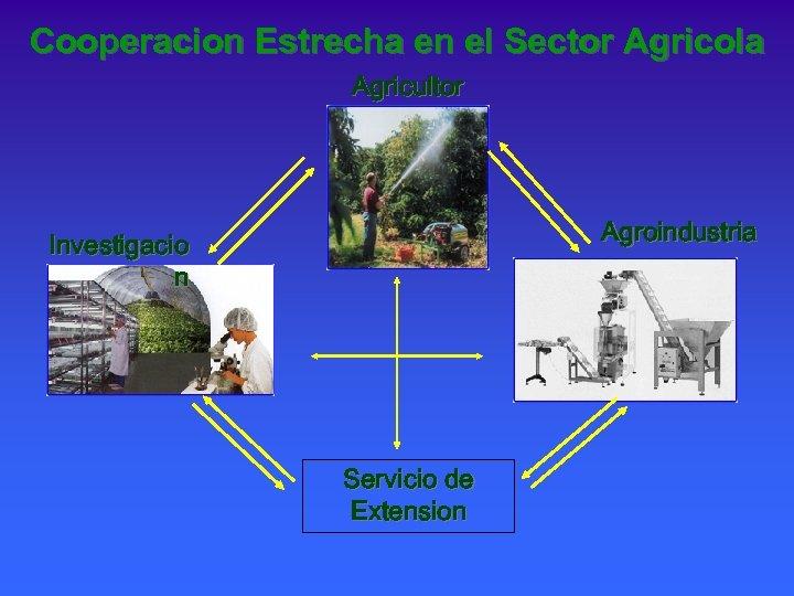 Cooperacion Estrecha en el Sector Agricola Agricultor Agroindustria Investigacio n Servicio de Extension