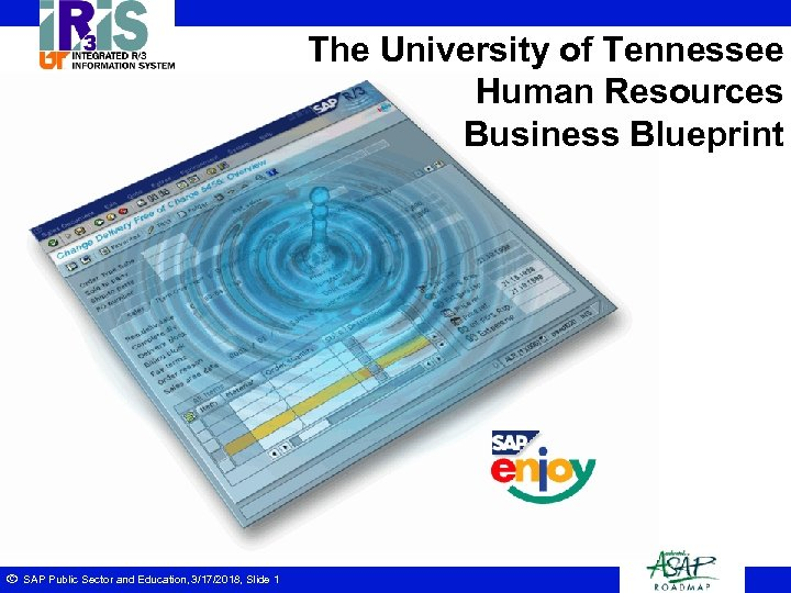 The University of Tennessee Human Resources Business Blueprint ã SAP Public Sector and Education,