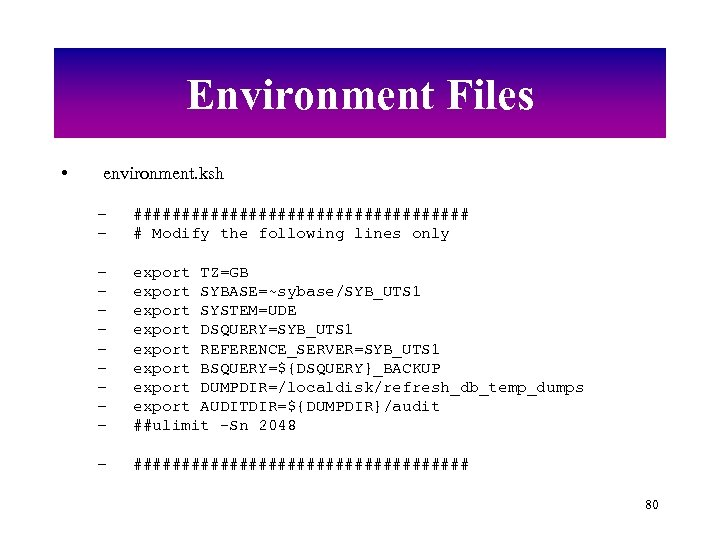 Environment Files • environment. ksh – – ################## # Modify the following lines only