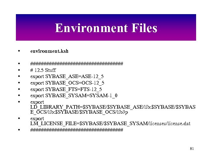 Environment Files • environment. ksh • • ################## # 12. 5 Stuff export SYBASE_ASE=ASE-12_5
