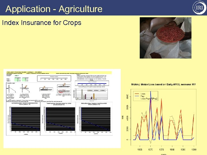 Application - Agriculture Index Insurance for Crops