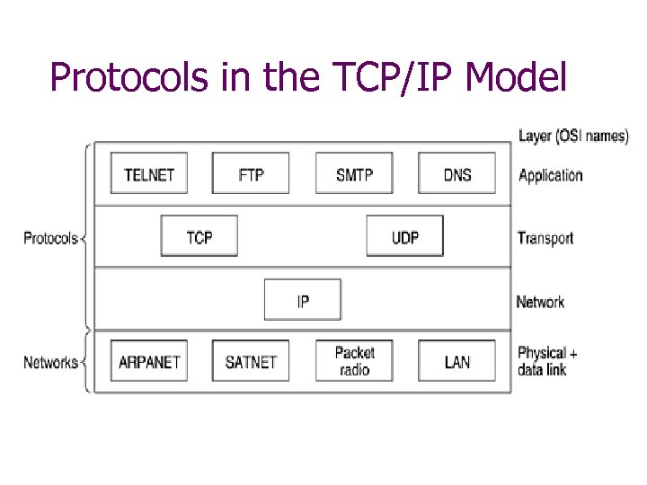 Protocols in the TCP/IP Model
