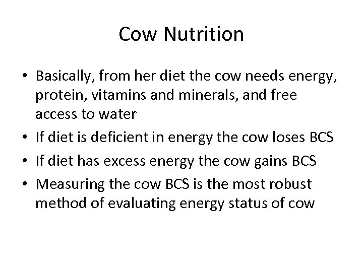 Cow Nutrition • Basically, from her diet the cow needs energy, protein, vitamins and
