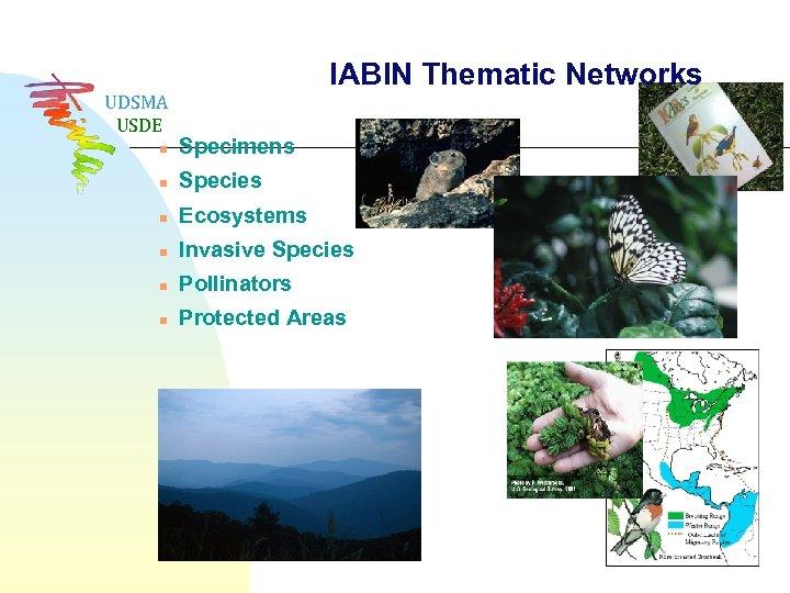 UDSMA USDE IABIN Thematic Networks n Specimens n Species n Ecosystems n Invasive Species