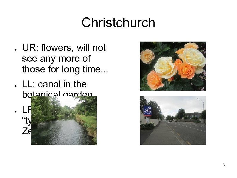 Christchurch ● ● ● UR: flowers, will not see any more of those for