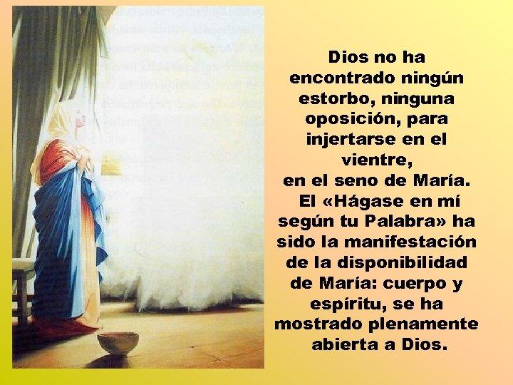 Dios no ha encontrado ningún estorbo, ninguna oposición, para injertarse en el vientre, en