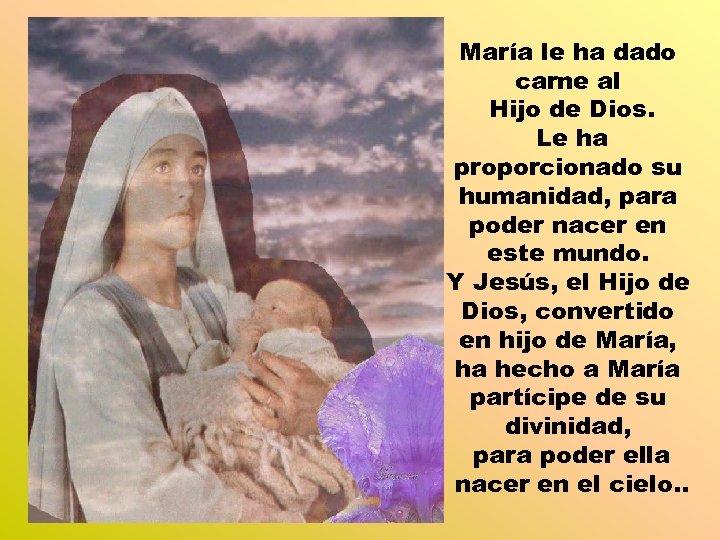 María le ha dado carne al Hijo de Dios. Le ha proporcionado su humanidad,