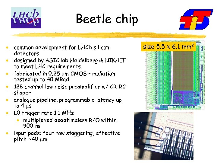 Beetle chip common development for LHCb silicon detectors designed by ASIC lab Heidelberg &