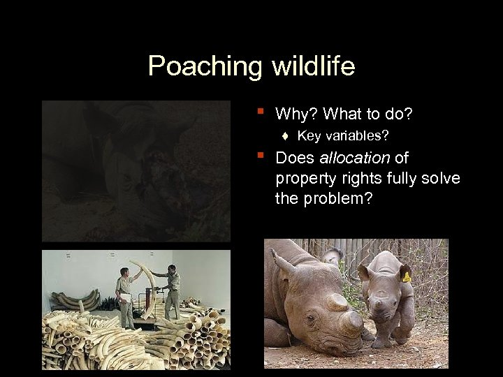 Poaching wildlife ▪ ▪ Why? What to do? ♦ Key variables? Does allocation of