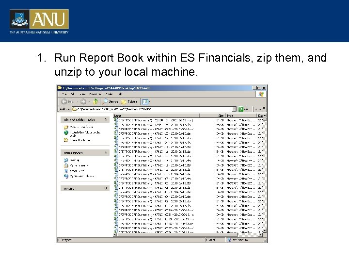 1. Run Report Book within ES Financials, zip them, and unzip to your local