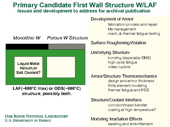 Primary Candidate First Wall Structure W/LAF Issues and development to address for archival publication