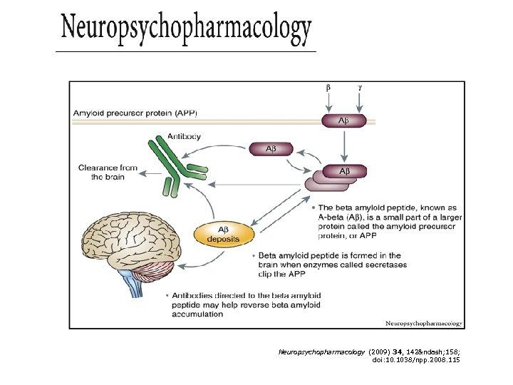 Figure 6 Neuropsychopharmacology (2009) 34, 142– 158; doi: 10. 1038/npp. 2008. 115