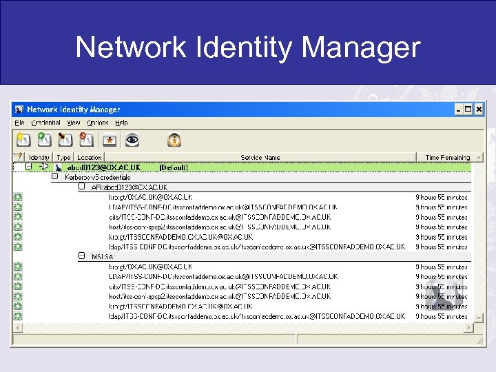 Network Identity Manager