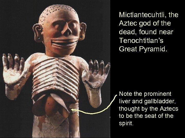 Mictlantecuhtli, the Aztec god of the dead, found near Tenochtitlan's Great Pyramid. Note the
