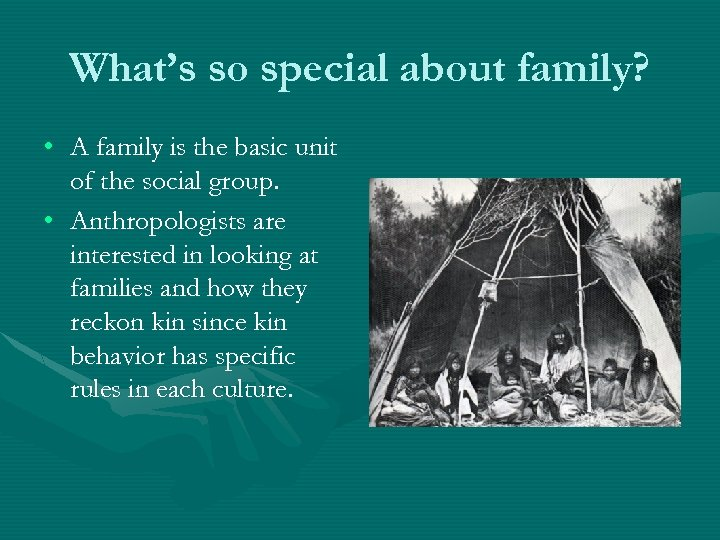 What's so special about family? • A family is the basic unit of the