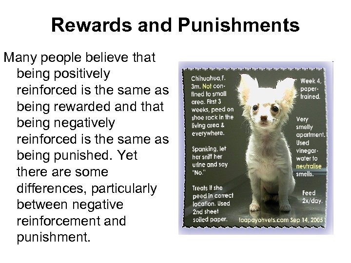 Rewards and Punishments Many people believe that being positively reinforced is the same as