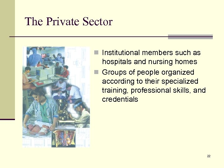 The Private Sector n Institutional members such as hospitals and nursing homes n Groups