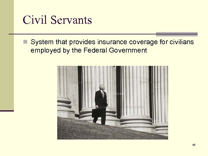 Civil Servants n System that provides insurance coverage for civilians employed by the Federal