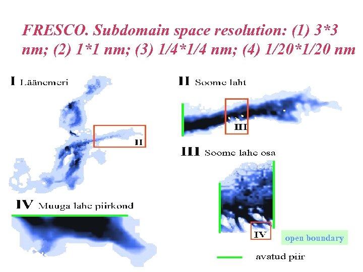 FRESCO. Subdomain space resolution: (1) 3*3 nm; (2) 1*1 nm; (3) 1/4*1/4 nm; (4)