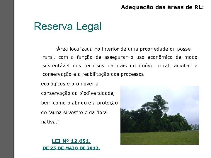 """Adequação das áreas de RL: Reserva Legal """"Área localizada no interior de uma propriedade"""
