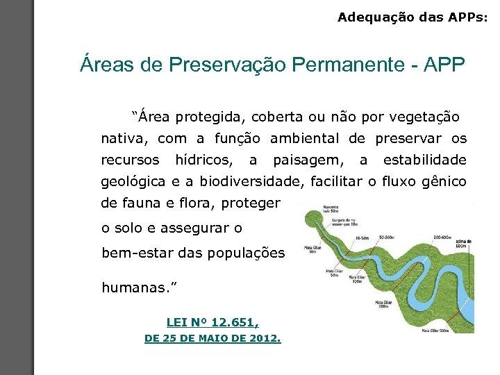 """Adequação das APPs: Áreas de Preservação Permanente - APP """"Área protegida, coberta ou não"""