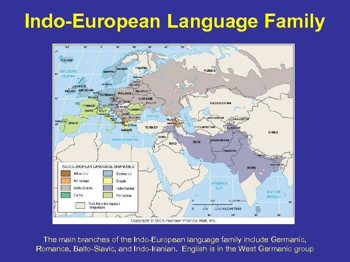 Indo-European Language Family The main branches of the Indo-European language family include Germanic, Romance,