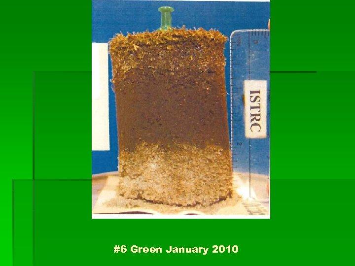 #6 Green January 2010
