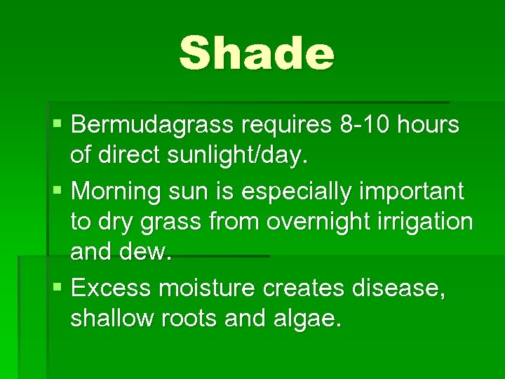 Shade § Bermudagrass requires 8 -10 hours of direct sunlight/day. § Morning sun is