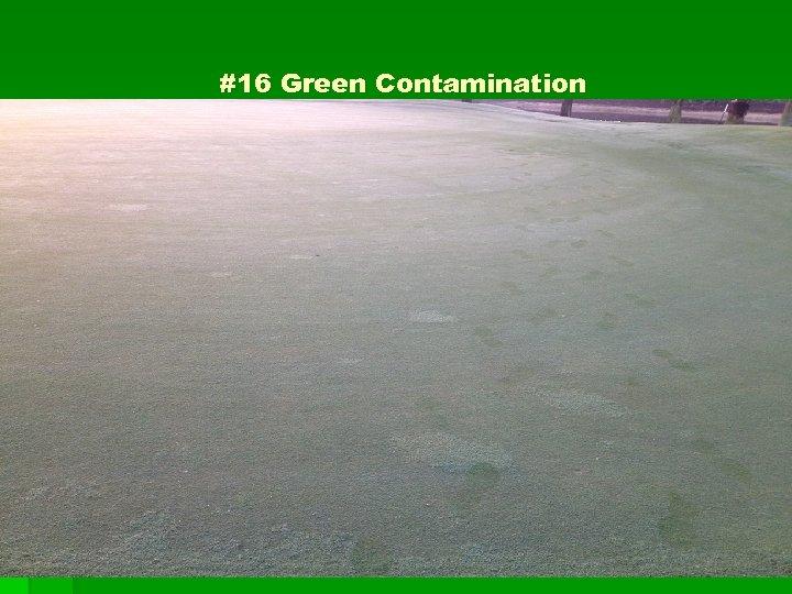 #16 Green Contamination