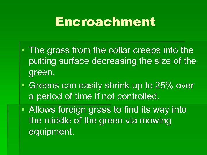 Encroachment § The grass from the collar creeps into the putting surface decreasing the