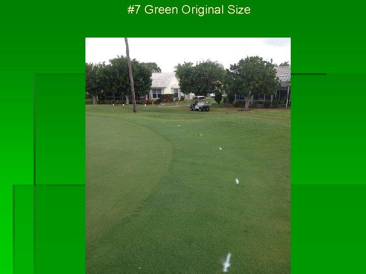 #7 Green Original Size
