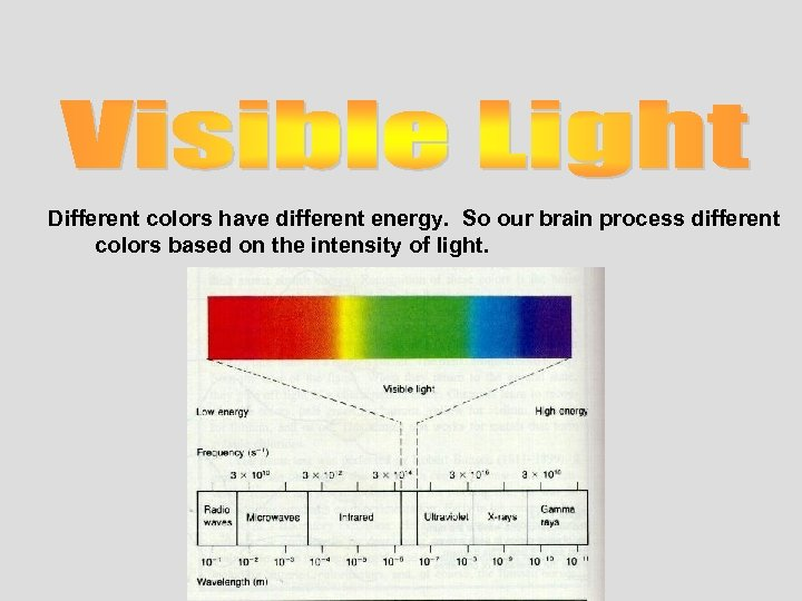 Different colors have different energy. So our brain process different colors based on the
