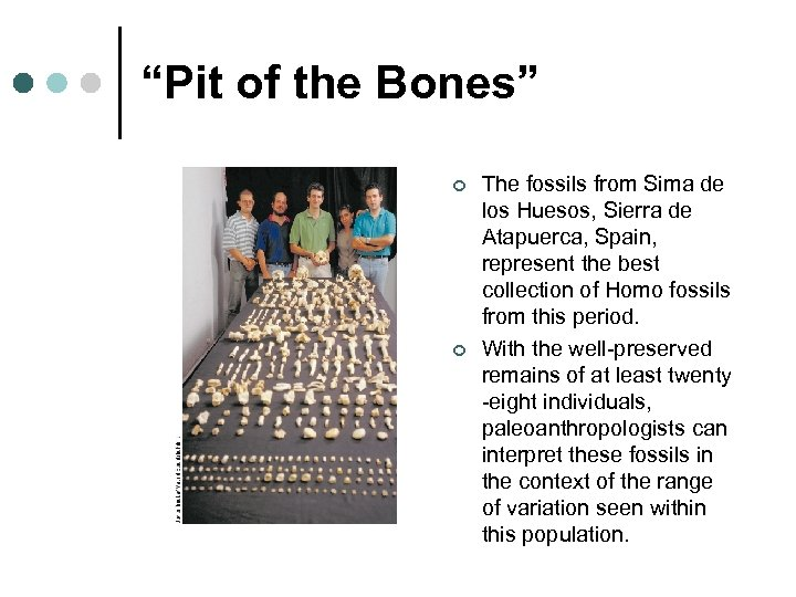"""""""Pit of the Bones"""" ¢ ¢ The fossils from Sima de los Huesos, Sierra"""