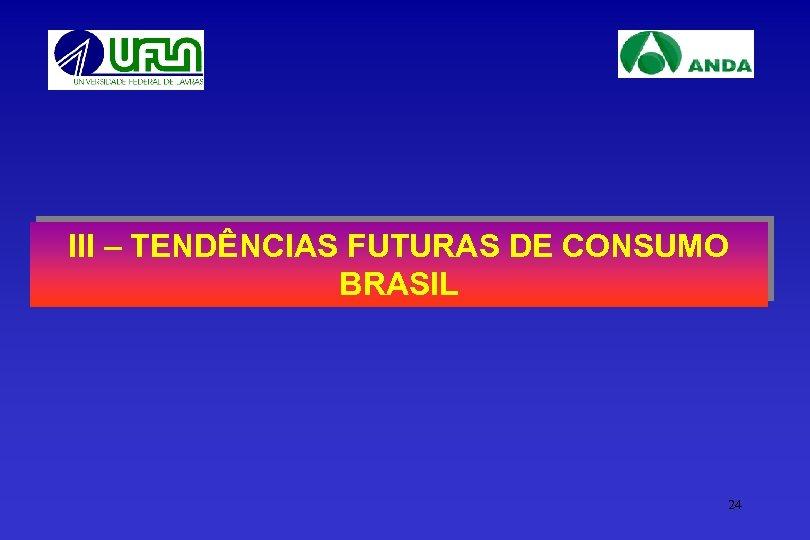 III – TENDÊNCIAS FUTURAS DE CONSUMO BRASIL 24