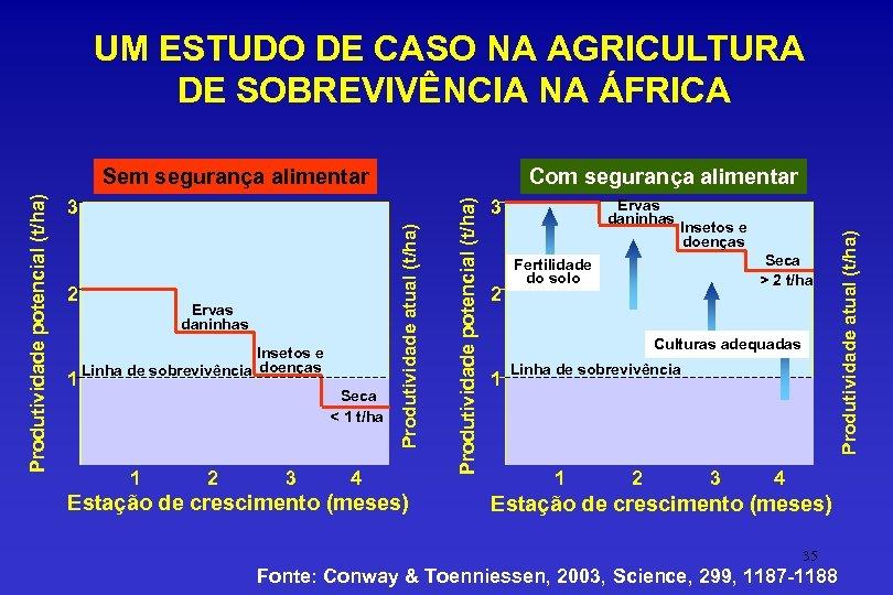 UM ESTUDO DE CASO NA AGRICULTURA DE SOBREVIVÊNCIA NA ÁFRICA 2 1 Ervas daninhas