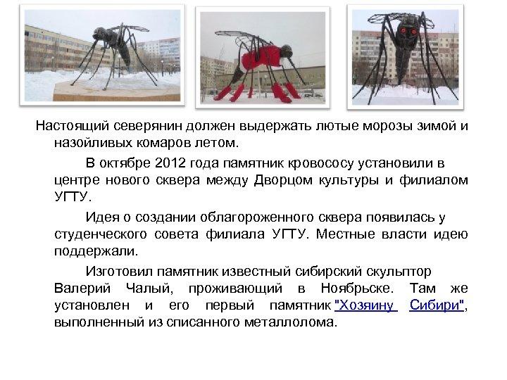 Настоящий северянин должен выдержать лютые морозы зимой и назойливых комаров летом. В октябре 2012